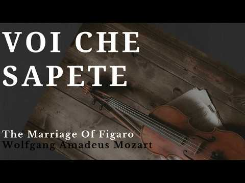Voi Che Sapete Lyrics (English).Mozart Official HD