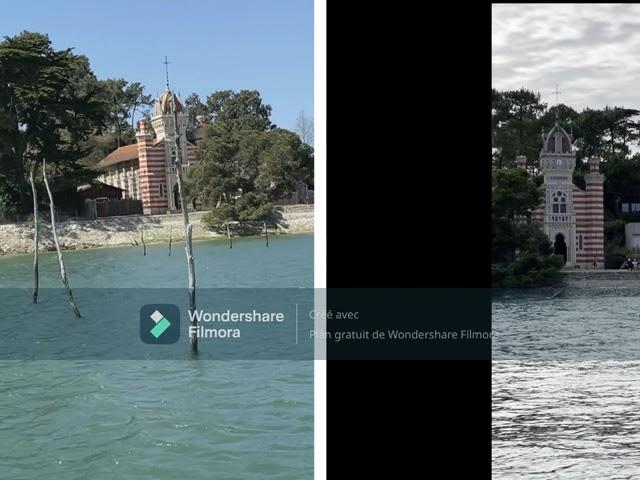 Le pin de la chapelle algérienne de l'herbe est tombée Cap Ferret août 2021