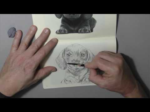 carnet-à-dessins-1---page-5---chiot