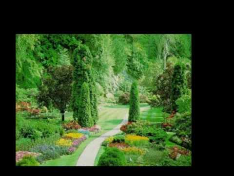 elvis presley in the garden youtube