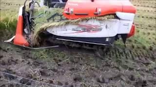 湿田でもハマりにくいクボタコンバインER215で、深みのある超湿田...