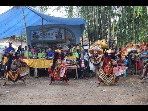 Jaranan Buto Sekar Jati Banyuwangi Simbar Tampo Cluring