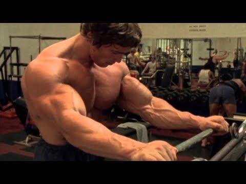 Arnold Schwarzenegger: The Austrian Oak