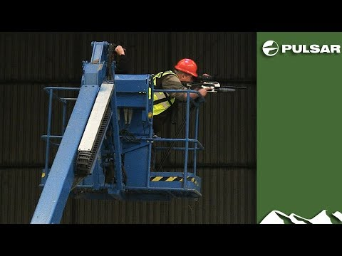 Industrial rat shoot with air rifles
