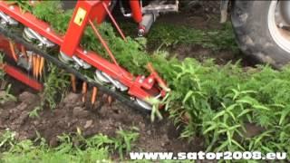 Sator Compakt - Kombajn do marchwi i pietruszki / Carrot & Parsley Harvester