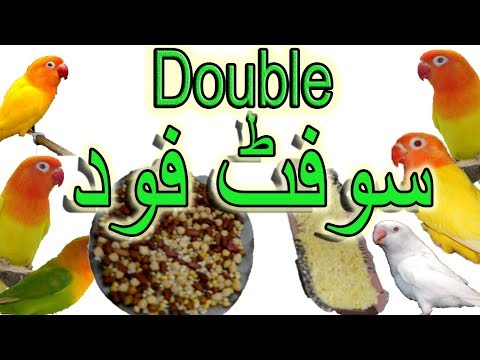 Double Soft Food, Eggs & White Bread and beans (Ep. 30)