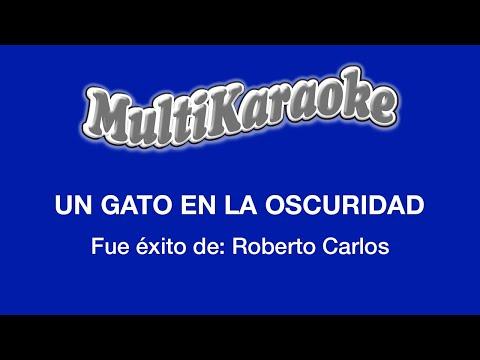 Multi Karaoke - Un Gato En La Oscuridad