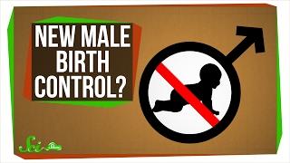 A New Male Birth Control?