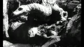 SIGFRIDO LOTTA CONTRO IL DRAGO (Die Nibelungen: Siegfried, 1924)