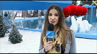 Total Wipeout & Winter Wipeout - BBC One - YouTube