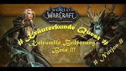 WoW Quest Kulturelle Bedeutung Battle for Azeroth HD