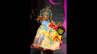 MISS UNIVERSE  2013 NATIONAL COSTUME TOP 10