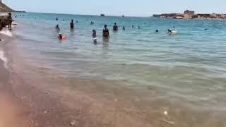 Пляж отеля Альбатрос Аква парк Шарм Египет
