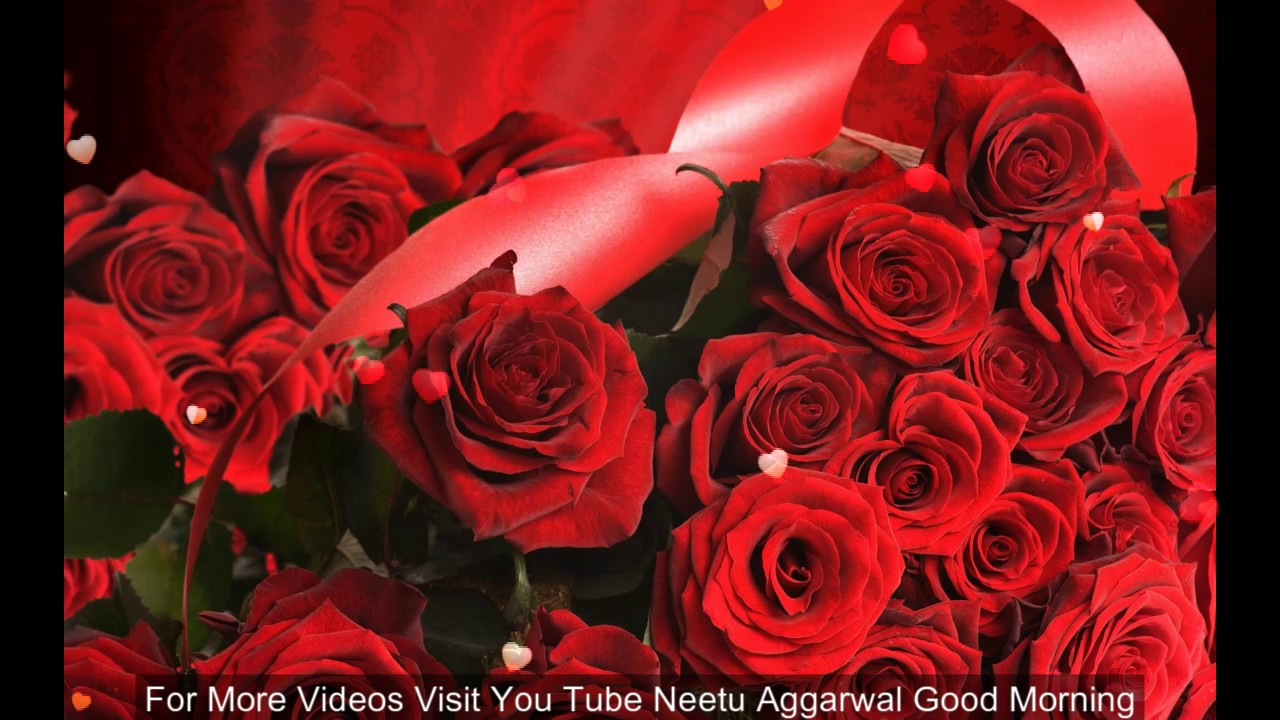 Good morning wishes with beautiful red rosesmorning flowers for you good morning wishes with beautiful red rosesmorning flowers for youwisheswallpapers izmirmasajfo