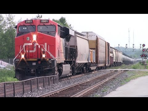 A day trackside on CN's Kingston Sub | 07-22-2017