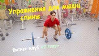 Упражнения для мышц спины, тренировка с Юрием Бараненко (ЦИТРУС ФИТНЕС КЛУБ ЛЮБЕРЦЫ)(Юрий рассказывает нам несколько упражнений для тренировки мышц спины. Техника упражнений и полезные совет..., 2015-09-15T09:15:40.000Z)