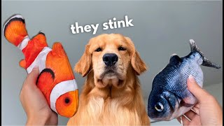 My Dog Reacts to Floppy Fish