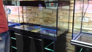 Аквариум БиоДизайн Crystall(Новая ветка аквариумов от компании БиоДизайн Приобрести можно тут: http://aquagarant.ru/aquariumi/BioDesign/akvariumy-biodizajn-seriya-crystal/, 2015-10-07T08:26:21.000Z)