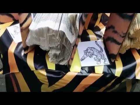 Kala Ghoda Arts Festival In Mumbai India 2015 | Book On Save Tigers | HD Video