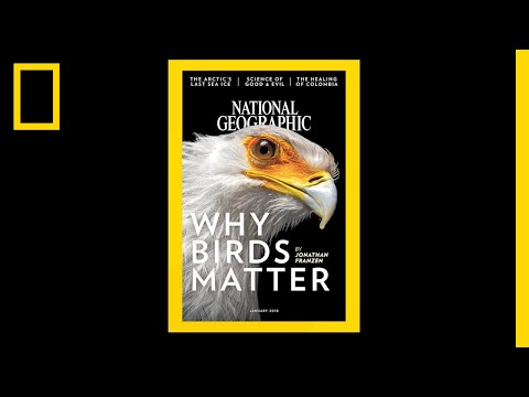 See 130 Years of National Geographic Covers in Under 2 Minutes   National Geographic