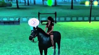 sims 3 licorne noir  téléporter
