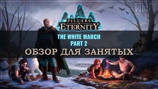Pillars of Eternity: The White March 2 - Обзор для занятых