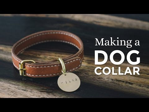 Making a Leather Dog Collar ⧼Week 1/52⧽