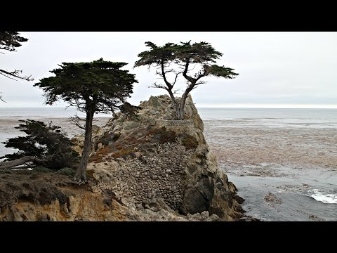 Tour of Monterey & The Pacific Coast, California, USA