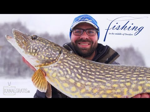 Fishing in the Middle of Sweden - Ice Fishing Big Pikes