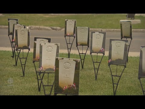 Photo Journalist Pays Tribute To Saskatchewan D-Day Soldiers