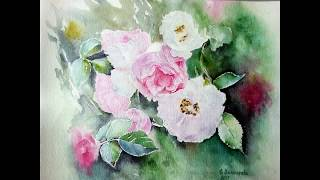Картины Акварелью Купить у художника: Портреты Цветов,Розы. Акварельная Живопись Работы