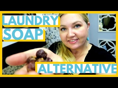 LAUNDRY SOAP ALTERNATIVE | Soap Nuts | Seattle, Washington | S3E11