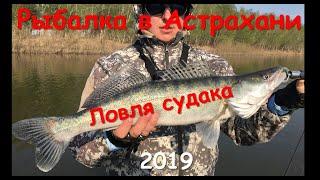 Рыбалка в Астрахани 2019 Ловля судака Никольское