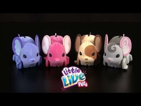 Little Live Pets Lil' Mouse From Moose Toys