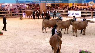 Replay - Grand Ring | Mercredi 1 Mars CONCOURS TARENTAISE