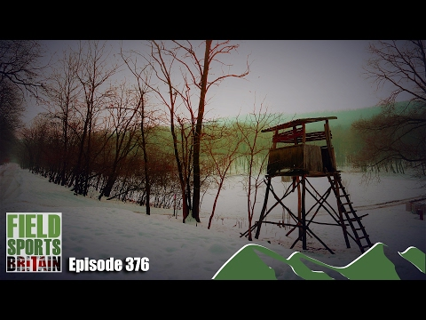 Fieldsports Britain - Hunting Hungary in the Snow