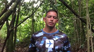Sobrevivência na Selva
