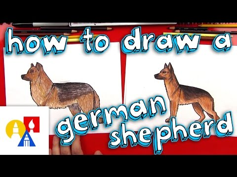 How To Draw A German Shepherd