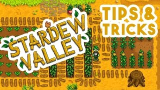 Stardew Valley \\ Tutorial \\ Beginner Tips & Tricks Guide