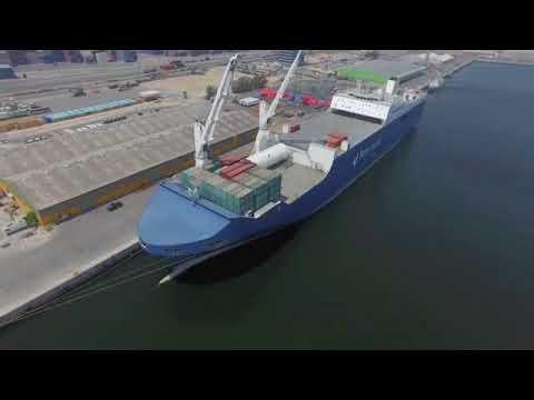 UK Agents for Bahri Shipping - Allseas Global