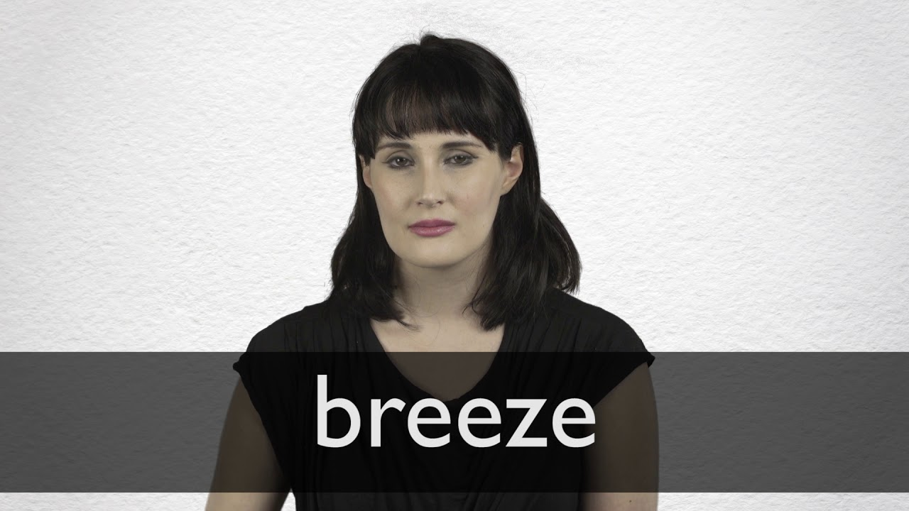 "Hindi Translation of ""breeze"" 
