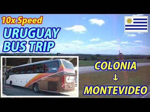 10x BUS TRIP Colonia del Sacramento → Montevideo, Uruguay