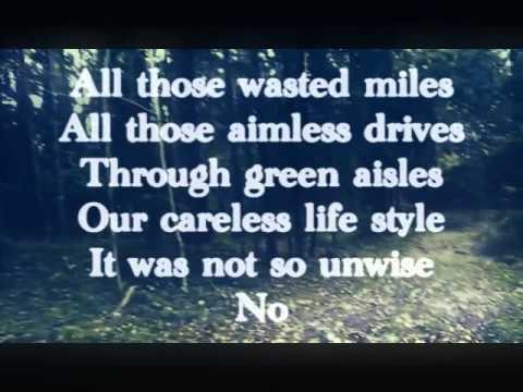 Real Estate - Green Aisles (w/ Lyrics)