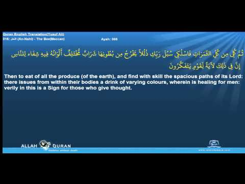 Quran English Yusuf Ali Translation 016 النحل An Nahl The Be