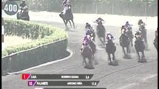 Vidéo de la course PMU DUM DUM