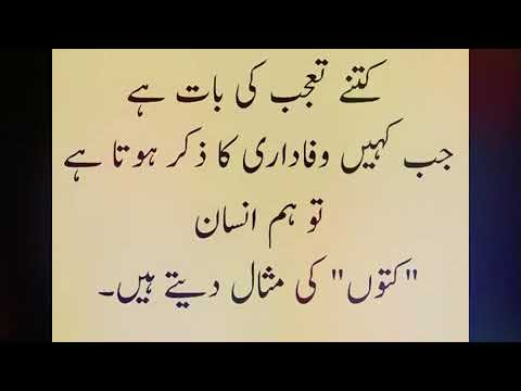 Lovely Quotes with voice by A.Arshad