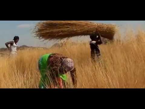 Alick Macheso Latest 2016...sungura traditional fusion ft Danai