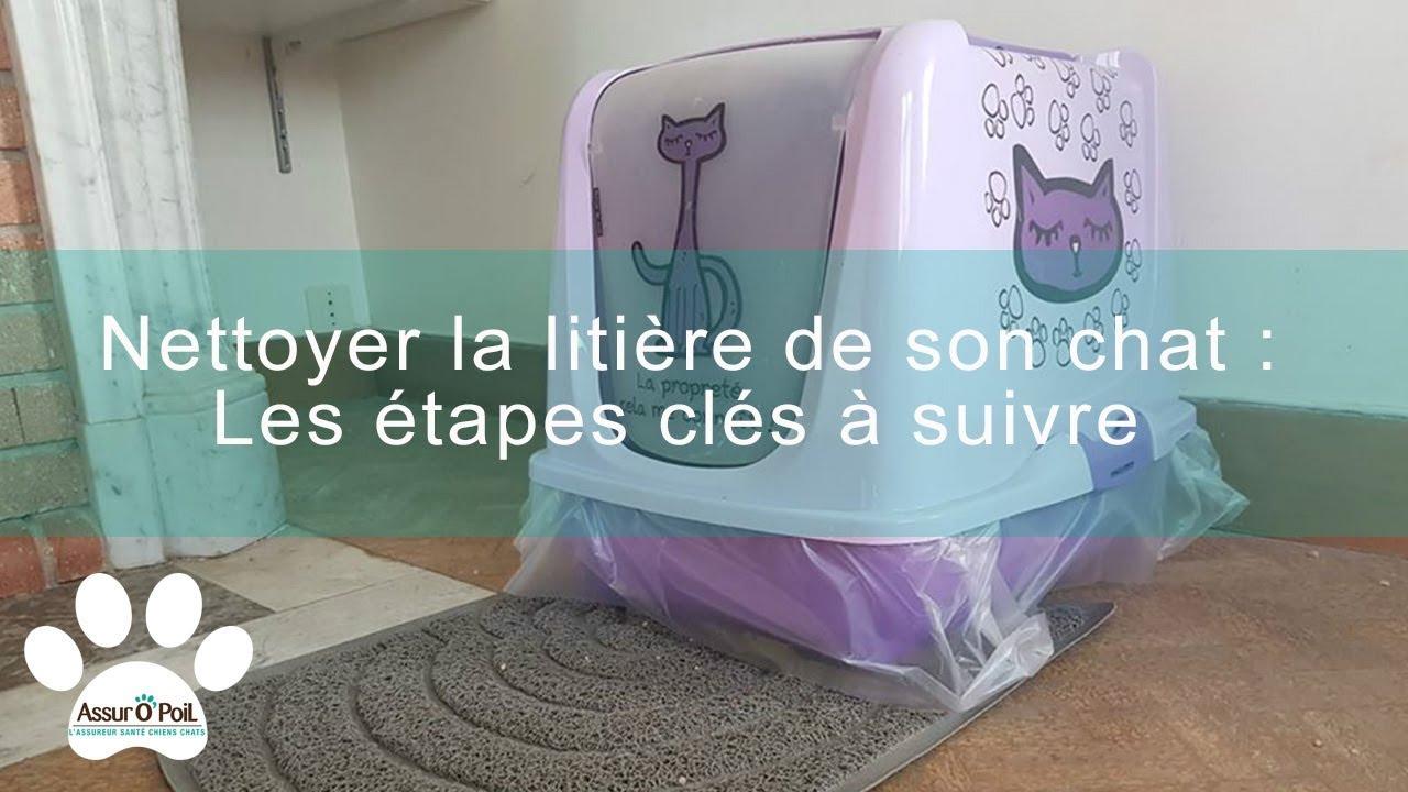 4 astuces pour nettoyer la liti re de son chat assur o 39 poil youtube. Black Bedroom Furniture Sets. Home Design Ideas