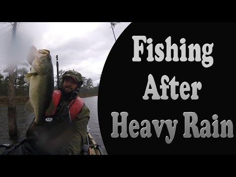Bass Fishing After a Heavy Rain