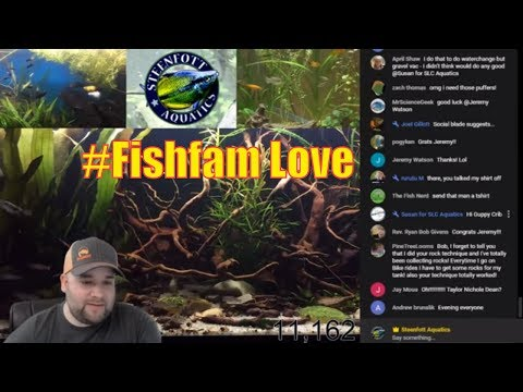 Aquarium Livestream - Feeling the #FishFam Love - Live Unboxing